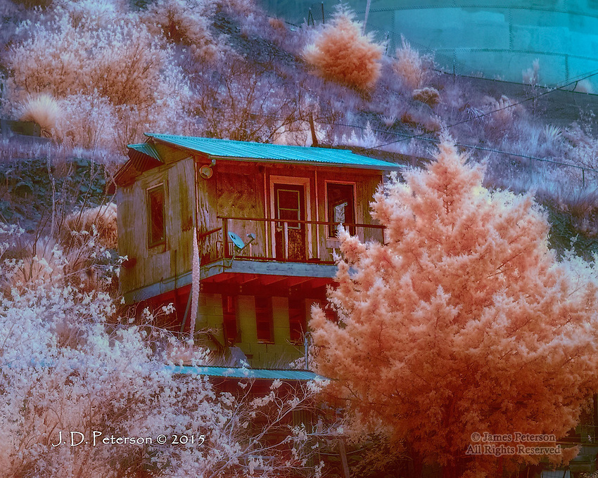 Bisbee Home and Garden (Infrared)