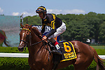 June 7, 2014: Undrafted with John Velazquez aboard wins the Grade III Jaipur Invitational at Belmont Park in Elmont, New York. Zoe Metz/ESW/CSM