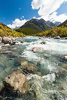 Otira River near Otira, Arthur's Pass National Park, West Coast, New Zealand