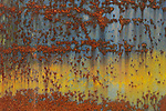 Cracked paint abstract, Astoria, Oregon