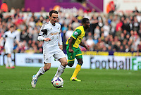 Swansea v Norwich, Liberty Stadium, Saturday 29th march 2014...<br /> <br /> <br /> <br /> Swansea's Leon Britton