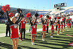 December 30, 2016: Georgia Bulldog cheerleaders in the AutoZone Liberty Bowl at Liberty Bowl Memorial Stadium in Memphis, Tennessee. ©Justin Manning/Eclipse Sportswire/Cal Sport Media