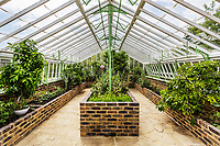 BNPS.co.uk (01202 558833)<br /> Pic: Hamptons/BNPS<br /> <br /> Pictured: The greenhouse.<br /> <br /> An incredible Arts and Crafts country house with its own vineyard is on the market for offers over £7m.<br /> <br /> The Grade II listed St Joseph's Hall is a striking 111-year-old property that was home to the Bishop of Arundel for 40 years.<br /> <br /> It has a wealth of period features, an indoor swimming pool and seven acres of vineyard with mostly Chardonnay grapes, which the owners sell to a local winery.<br /> <br /> The house in Storrington, West Sussex, has 17 acres of land with beautiful views over the South Downs.