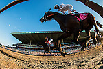 June 07, 2014: Tonalist with Joel Rosario (left) defeats Commissioner and Javier Castellano to win the Belmont Stakes ending California Chrome's  bid at a Triple Crown at Belmont Park in Elmont New York. Alex Evers/ESW/CSM