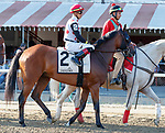 March to the Arch in the post parade as Raging Bull (no. 3) wins the Saranac Stakes (Grade 3), Sep. 1, 2018 at the Saratoga Race Course, Saratoga Springs, NY.  Ridden by Joel Rosario, and trained by Chad Brown, Raging Bull finished 1 1/4 lengths in front of Up the Ante (No. 1).  (Bruce Dudek/Eclipse Sportswire)
