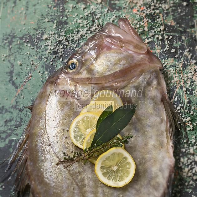 Cuisine/Gastronomie générale: Le saint-pierre (Zeus faber) poisson marin, également appelé dorée doit son nom à la tache noire qui orne chacun de ses flancs, qui serait selon la légende la marque des doigts de Saint Pierre. <br /> - Stylisme : Valérie LHOMME