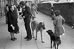 SNP Scottish National Party. Prospective MP Alex Ewing campaigning in 1979 Glasgow Cathcart.  He did not win and came third to labour and then Conservative. 1970s. Seen campaigning with his pet dog.