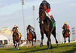 09 October 17: Marsh Side (no. 5), the 2008 winner of the grade 1 Canadian International Stakes for three year olds and upward, fails in his bid to repeat in 2009 at Woodbine Racetrack in Rexdale, Ontario.