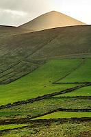 Green pastures below Cruach Mhárthain, Dingle Peninsula, County Kerry, Republic of Ireland