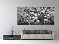 """A monochrome rendition of this majestic southern live oak near Charleston, SC. A mosaic arrangement of three prints displayed as a triptych (photograph is divided into three separate panels hung 1"""" apart)"""