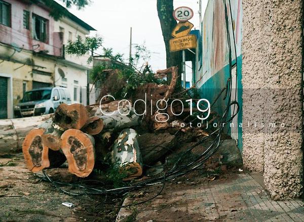 SÃO PAULO, SP, 11.02.2021:  Queda de árvores SP  - Vista do danos causados pelo temporal que atingiu o bairro de Perus na zona noroeste de cidade de São Paulo SP , no fim da tarde de ontem.No destaque os estragos da queda de árvores de grande porte na manhã desta quinta -feira (11) .