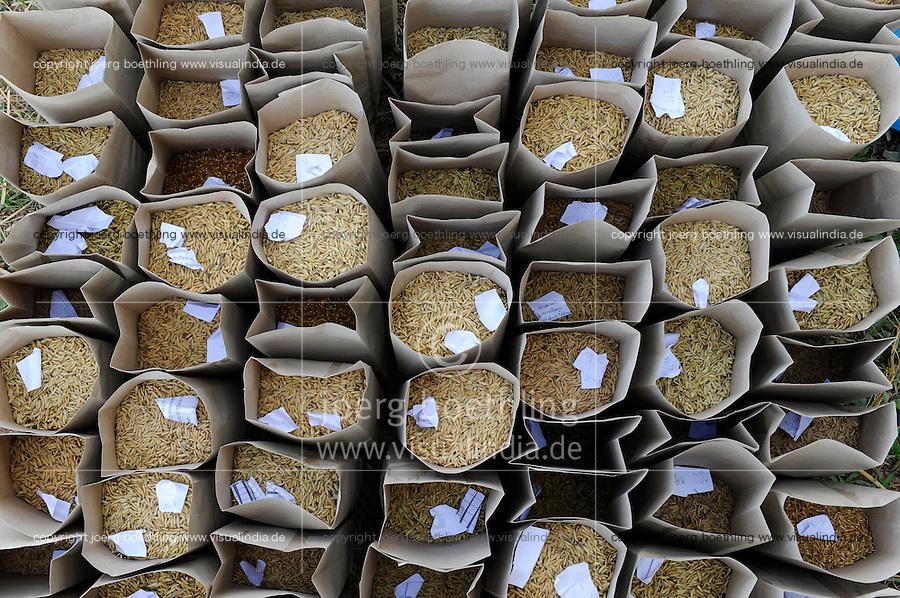 LAOS Vientiane NAFRI Forschungsinstitut fuer Land- u. Forstwirtschaft, Anbau von verschiedenen Reissorten und Kreuzung von neuen Sorten mit hoeheren Ertraegen, Reis Genbank / LAOS rice research institut NAFRI , rice seed bank, different rice varieties for crossing of new hybrids