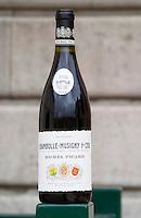 chambolle musigny 1er cru dom m picard chateau de ch-m chassagne-montrachet cote de beaune burgundy france
