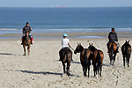 August 14, 2021, Deauville (France) - Polo Ponys on the way to the beach in Deauville. [Copyright (c) Sandra Scherning/Eclipse Sportswire)]