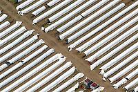 4415/Spargelfeld:EUROPA, DEUTSCHLAND, MECKLENBURG- VORPOMMERN, 28.05.2005:Spargel, Feld, Landwirtschaft, Planen,  Gemuese,  Luftbild, Luftbild,