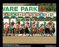 As seen in the Arabian Horse Galleries exhibit at The Kentucky Horse Park<br /> <br /> horses breaking from the starting gate.The UAE Equestrian and Racing Federation Stakes Grade 1