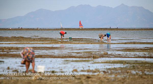 Pêche à marée basse sur le platier, Nouvelle-Calédonie