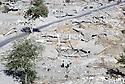 Irak 1991  Kala Diza en ruines, dynamitées par l'armée irakienne   Iraq 1991  Kala Diza in ruins, dynamited by the Iraqi army