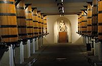 Europe/France/Aquitaine/33/Gironde/Pauillac: château Mouton-Rothschild (AOC Pauillac) - Le cuvier [Non destiné à un usage publicitaire - Not intended for an advertising use]