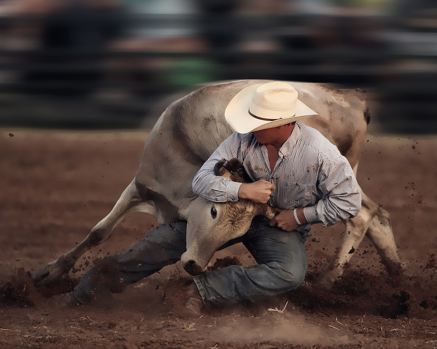 Steer wrestling at the Riata Roundup in Lometa, Texas. June 8th 2013 at night..