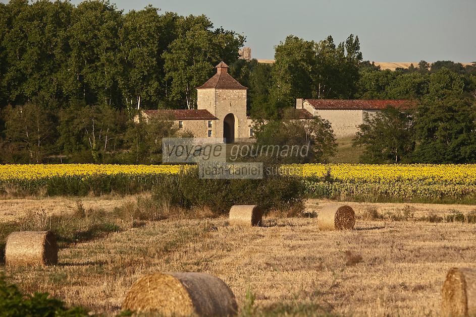 Europe/France/Midi-Pyrénées/32/Gers/Env de Valence-sur-Baïse:  Ferme de la Magdelaine de l' Abbaye de Flaran et champ de tournesol