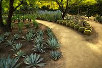 Pathway in Sunnylands gardens. Palm Springs, California