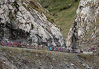up the Cormet de Roselend (2cat/1968m/5.7km@6.5%)<br /> <br /> 73rd Critérium du Dauphiné 2021 (2.UWT)<br /> Stage 7 from Saint-Martin-le-Vinoux to La Plagne (171km)<br /> <br /> ©kramon
