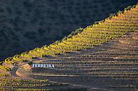 vineyards a quinta ferreira sign douro portugal