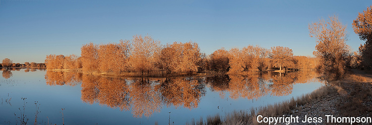 Fall Reflection, Bosque del Apache NWR