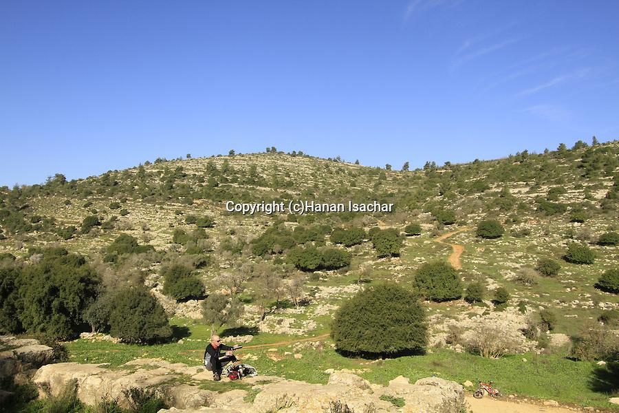 Israel, Jerusalem mountains, view from Ein Limor in Nahal Ksalon