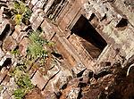 Temple Ruins 03 - Preah Palilay Temple, Angkor Thom, Cambodia