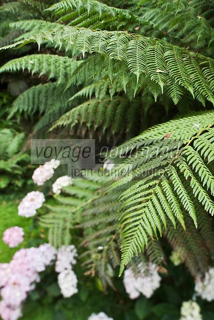 Europe/France/Normandie/Basse-Normandie/50/Manche/Presqu'île de la Hague/ Vauville: Jardin botanique du château de Vauville - Le jardin botanique de Vauville également appelé Jardin du Voyageur, abrite plus de 1 000 espèces de plantes de l'hémisphère austral. Le jardin a été classé Jardin remarquable en 2004.
