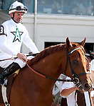 March 2010: Drosselmeyer and Kent Desormeaux before the Louisiana Derby at the Fair Grounds in New Orleans, La.