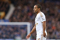 Wayne Routledge during the Barclays Premier League match between Everton and Swansea City played at Goodison Park, Liverpool