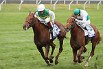 Angel Terrace and jockey James Graham win the Pin Oak Valley View Division 1 Grade 3 $125,000 at Keeneland racecourse for owner St. George Farm Racing LLC and trainer Jonathan Sheppard.   October 18, 2012.