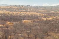 Tanzania.  Serengeti National Park.  Aerial View of Area Subjected to Controlled Burning.  Burning stimulates new vegetation and reduces tsetse fly infestation.