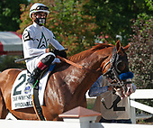 9th Whitney Stakes - Improbable