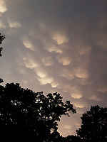 Courtesy of Xyta Lucas<br />