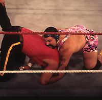 Steiner Bros & Quebecers 1993<br /> Photo By John Barrett/PHOTOlink
