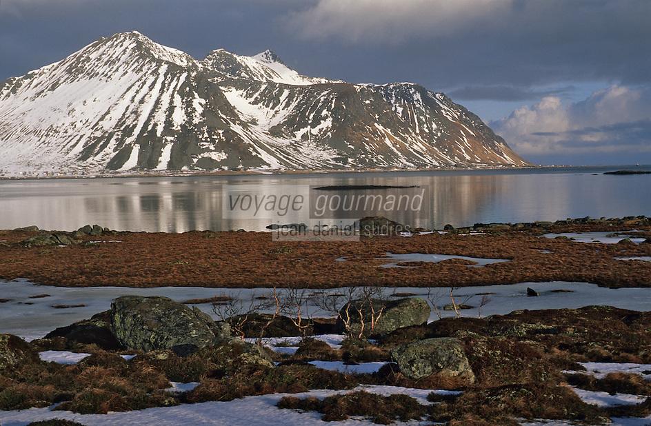 Europe/Norvège/Iles Lofoten: Lande aux environs d'Estorfjorden