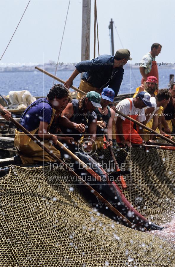 ITALY, Sicily, Egedian island Favignana, La Mattanza, traditional fishing of bluefin Tuna fish, harpooning and slaughter of tuna in the death chamber