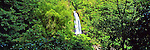 Caribbean Panorama - Trafalgar Waterfall in Dominica, Caribbean.<br /> <br /> Image taken on large format panoramic 6cm x 17cm transparency. Available for licencing and printing. email us at contact@widescenes.com for pricing. <br /> <br /> WARNING: Image Protected with PIXSY