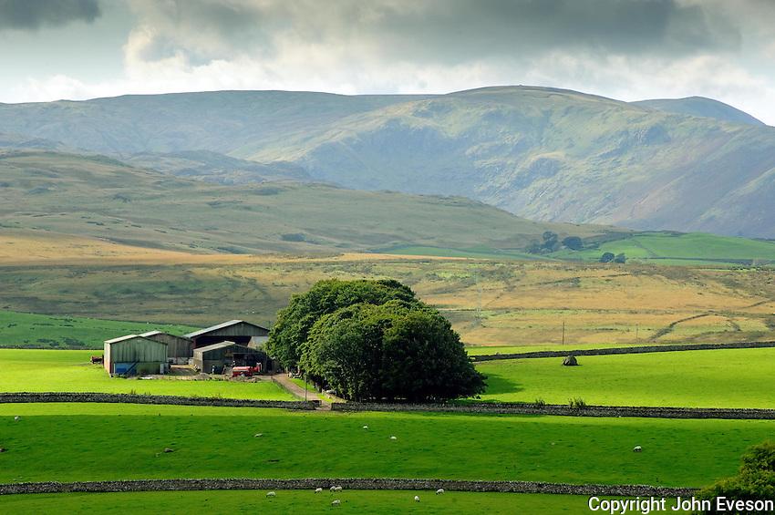 View of farmstead and fields near Shap, Cumbria....Copyright..John Eveson, Dinkling Green Farm, Whitewell, Clitheroe, Lancashire. BB7 3BN.01995 61280. 07973 482705.j.r.eveson@btinternet.com.www.johneveson.com