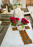 Oaxaca; Mexico; North America.  Day of the Dead Celebration.  Grave Decorated with Marigolds and Cockscomb, the traditional flowers used for this occasion.
