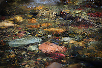 """CUT BANK TREASURE""<br />