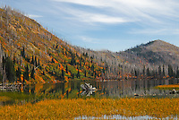 Beautiful autumn afternoon at Clayton Lake Flathead National Forest Montana