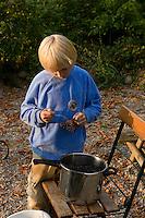 Schwarzer Holunder, Kind, Junge stribbelt reife Holunder-Beeren, Fliederbeeren in Topf, Sambucus nigra, Common Elder, Elderberry, Sureau commun, Sureau noir