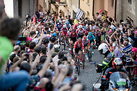Jan Bakelants (BEL/Sunweb) & Thomas de Gendt (BEL/Lotto-Soudal) leading the breakaway group up the steep, cobbled & crowded climb in Pinerolo (1st passage)<br /> <br /> Stage 12: Cuneo to Pinerolo (158km)<br /> 102nd Giro d'Italia 2019<br /> <br /> ©kramon
