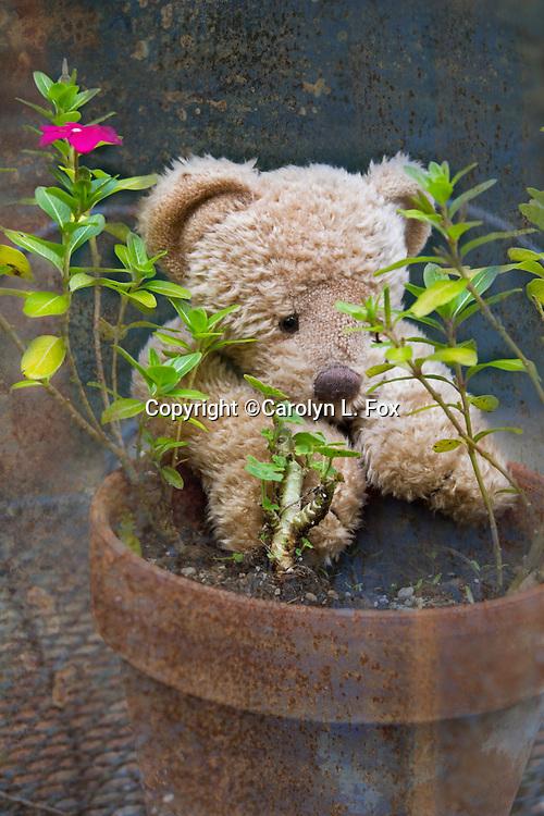 A stuffed teddy bear leans on a clay pot.