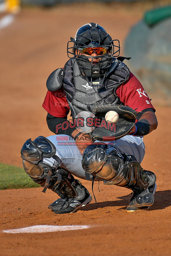 Meibrys Viloria (4) of the Idaho Falls Chukars before the game against the Ogden Raptors in Pioneer League action at Lindquist Field on June 28, 2016 in Ogden, Utah. The Raptors defeated the Chukars 12-11. (Stephen Smith/Four Seam Images)